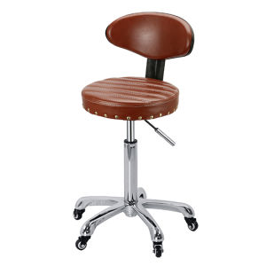 Cutting/Beauty Therapist Stool with Backrest Zc15 pictures & photos