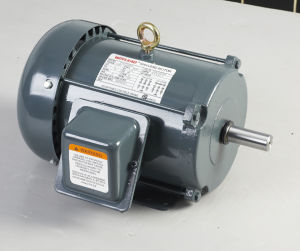 NEMA Premium Efficiency AC Motor pictures & photos