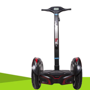 2 Wheel Electric Self Balance Scooter, E-Scooter pictures & photos