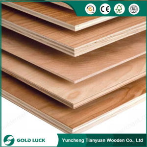 Linyi Commercial Plywood Manufacturer/Pencil Cedar Kuering Bingtangor Birch Okoume Plywood pictures & photos