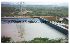 High Quality HDPE/LDPE Geomembranes Type Tank Liners pictures & photos