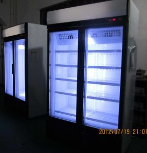 Vertical Freezer, Hight Quality Upright Display Freezer pictures & photos