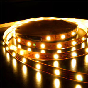 LED RGB Strip Light with 3014 SMD LED, R/G/B/Y/W/RGB Option (CNRY-1202) pictures & photos