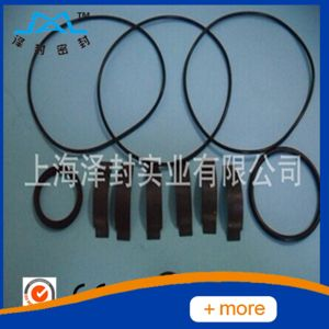 Ab Type PTFE Tcm Converter Oil Seal