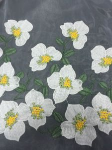 New Design Embroidery Lace Fabric for Dress pictures & photos