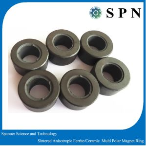 Ferrite Isotropic Permanent Multipole Magnet Rings pictures & photos