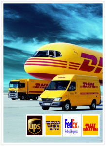 Consolidate a-Class DHL/Courier Service/Express to USA pictures & photos