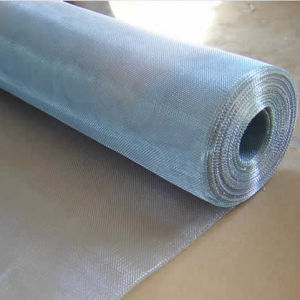 Blue Shining Galvanzied Iron Wire Netting pictures & photos