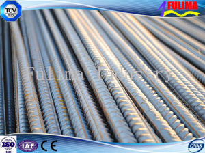 High Quality Reforced Deformed Steel Bar for Building Ceiling (SSW-dB-001) pictures & photos
