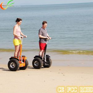 Scooter for Kids with Approved CE FCC RoHS pictures & photos