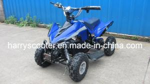 800W Electric ATV, Mini Quads