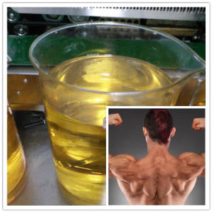 Injectable Steroid Oil Liquid/Raw Powder Boldenone Acetate/Boldenone Acetate 100