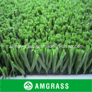 Popular Indoor Tennis Court Grass and Synthetic Turf