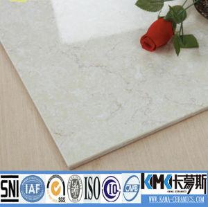 Ceramic Wall Tile / Ceramic Floor Tile