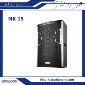 Skillful Manufacture Nk 15 Single 15 Inch Full Frequency Speaker pictures & photos
