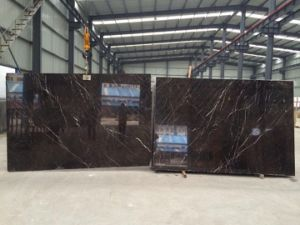 St Laurent Brown Marble Stone/Covering/Flooring/Paving/Tiles/Marble/Countertop/Slabs pictures & photos