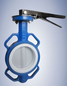 Wcb ANSI Wafer Type Butterfly Valve (D71X-16C) pictures & photos