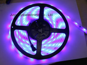 IP65/IP67/IP68 RGB LED Light Strip for Festival Decoration pictures & photos