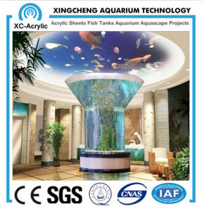 Cylindrical Acrylic Aquarium pictures & photos