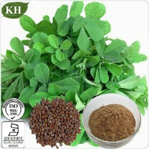 Fenugreek Seed Extract / Furostanol Saponins pictures & photos