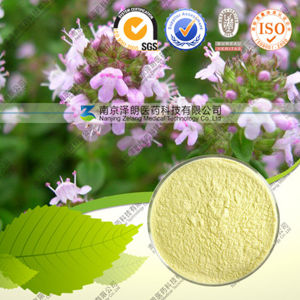 High Quality 100% Natural Rosemary Extract Ursolic Acid pictures & photos