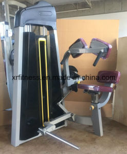 XP17 Seated Tricep DIP Gym Machines pictures & photos