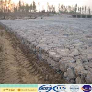 ISO Factory Hot Dipped Galvanized Gabion Mesh (XA-GM12) pictures & photos