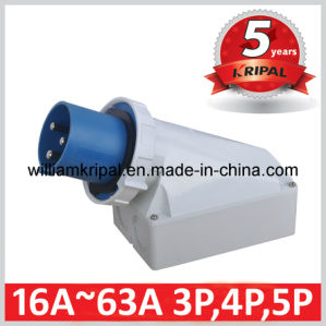 IP67 63A 3p+N+E 230 Industrial Wall Mounted Appliance Inlets pictures & photos