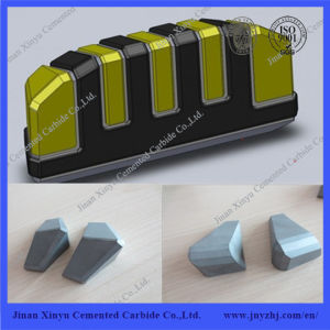 Tungsten Carbide Shield Cutter for Road Construction pictures & photos