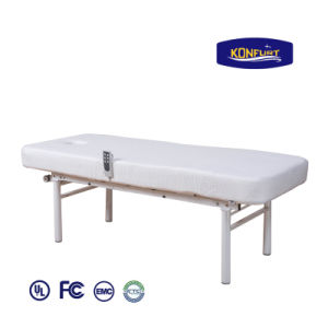 Electric Bed Adjustable Bed Beauty Salon Bed pictures & photos