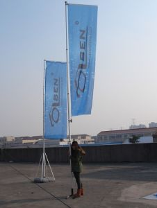 Giant Car Flagpole pictures & photos