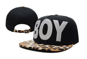 New Arrive Snapbacks Costom-312