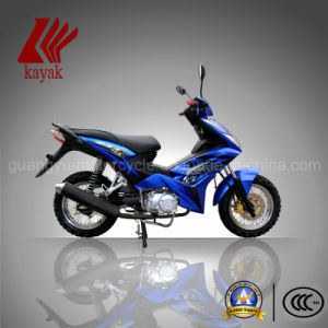 Chinese 110cc OEM Asia Eagle Cub Motorcycle (KN110-10)