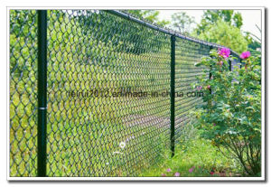 Galvanized Chain Link Fence pictures & photos