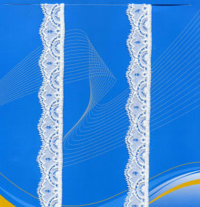 Nice Raschel Lace for Lady Dress pictures & photos