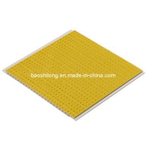 PVC Ceiling PVC Panel (BSL-2016)