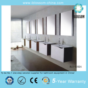 Wall-Mounted MDF Bathroom Vanity Cabinet with Mirror (BLS-EU025) pictures & photos