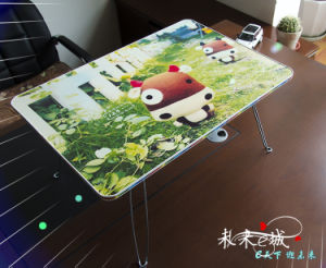Iml/in Mould Label, Heat Transfer Film /Cute Desktop pictures & photos