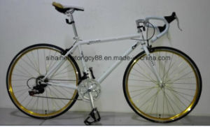 700c*23c 14 Speed Cheap Racing Bike, Road Bike Sh-Sp116 pictures & photos