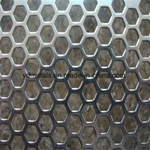 Hexagonal Hole Perforated Metal Mesh pictures & photos