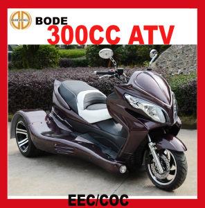 New EEC 300cc Reverse Trike (MC-393) pictures & photos