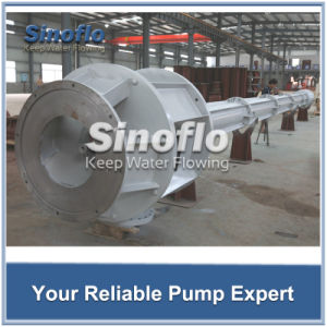 Long Axis Overhung Vertical Turbine Sump Pump pictures & photos