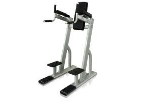 Gymnastics Equipment Vertical Knee Raise (V8-301) pictures & photos