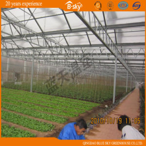 Durable Venlo Type Greenhouse Covered by Glass pictures & photos
