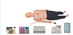 ALS Medical Training Manikin (Jc/ALS800A)