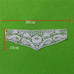 Embroidery Lace Collar with Lace (cn113) pictures & photos