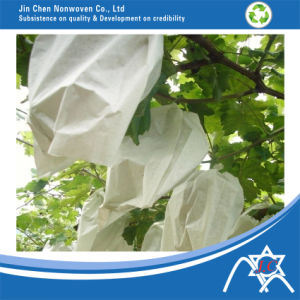Spunbond Nonwoven for Fruit Cover pictures & photos