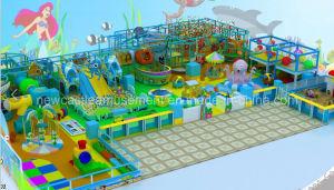 Indoor Playground (NC-IP201) pictures & photos