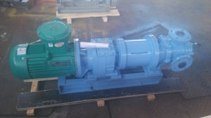 Nyp80 Magnetic Coupling Gear Pump pictures & photos