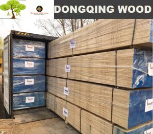 Construction Usage LVL Scaffold Board with Radiate Pine Timber pictures & photos